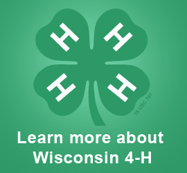 Learn more about Wisconsin 4-H